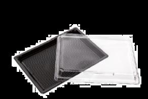 Sushi tray ZW 255x185+DE TR APET combi